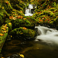 Emerald Falls In Columbia River Gorge Oregon Usa by Vishwanath Bhat