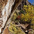 Emerald Falls Zion National Park by Jon Berghoff
