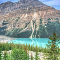 Peyto Lake 7 by Douglas Barnett