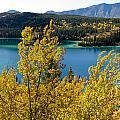 Emerald Lake At Carcross Yukon Territory Canada by Stephan Pietzko