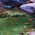 Emerald Pool 3 by Rachel  Butterfield