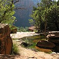 Emerald Pool View by Christiane Schulze Art And Photography