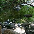 Emerald Waters by Susan Herber