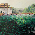 Emperor's Summer Palace by Marlene Book