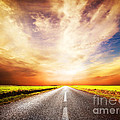 Empty Asphalt Road. Sunset Sky by Michal Bednarek