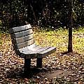 Empty Bench Meditation Spot by Karen Majkrzak