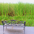 Empty Bench by Robert Edgar