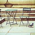 Empty by Karol Livote