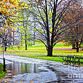 Empty Walkway On A Beautiful Rainy Autumn Day by Nishanth Gopinathan