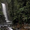 Encantada Waterfall Costa Rica by Teresa Zieba