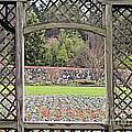 Enchanted Garden by George DeLisle