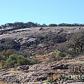 Enchanted Rock Park by Ruth  Housley