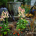 Enchanted Spring Garden by Byron Varvarigos