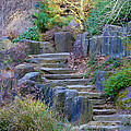 Enchanted Stairway by Athena Mckinzie