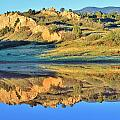 End Of Summer Reflections 2 by Diane Alexander