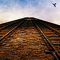 End Of The Line by Ericamaxine Price