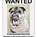 End Puppy Mills Most Wanted by Christopher Shellhammer