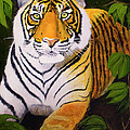 Endangered Bengal Tiger by Mike Robles