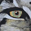 Endangered Eye I by Suzette Kallen