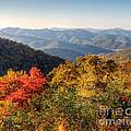 Endless Autumn Mountains by Emily Kay