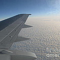 Endless Cotton Cloud Under The Wing by Ausra Huntington nee Paulauskaite