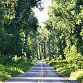 Endless Road by Kim Stafford
