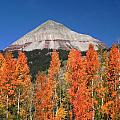 2d10688-engineer Mountain In Fall  by Ed  Cooper Photography