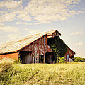 Englewood Barn by Cricket Hackmann