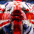 English Bull Dog by Marvin Blaine