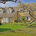 English Cottage by Elvis Vaughn