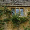 English Cottage Window by Denise Mazzocco
