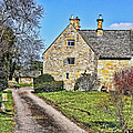 English Farmhouse by Elvis Vaughn