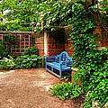English Garden by Julie Palencia