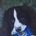 English Springer Spaniel Quasi Motto by Andrea Flint Lapins