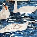 English Swan In The Queen's Garden by Larry Wright