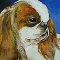 English Toy Spaniel by Michael Creese