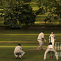 English Village Cricket by Linsey Williams