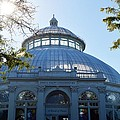 Enid A.haupt Conservatory by Sonali Gangane