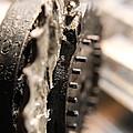 Enigma Wheel by Robert Phelan