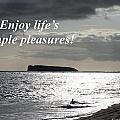 Enjoy Life's Simple Pleasures by Pharaoh Martin