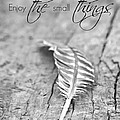 Enjoy The Small Things.. by Chastity Hoff