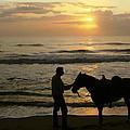 Enjoying The Sunrise by Myrna Bradshaw