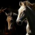 Enlightened Equestrian by Athena Mckinzie