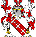 Enright Coat Of Arms Irish by Heraldry