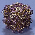 Entangled Spirals II by Manny Lorenzo