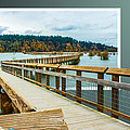 Landscape - Boardwalk - Enter Here by Barry Jones