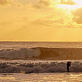 Enter The Surfer by AJ  Schibig