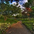 Entering The Japanese Garden by Michael Frank Jr