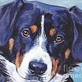 Entlebucher Mountain Dog by Lee Ann Shepard