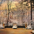 Entrance To Winter by Jai Johnson